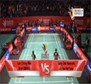Pertandingan Eksibisi Djarum Superliga 2014 (Lee Chong Wei Ariel Noah)