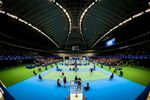 Yonex Japan Open Super Series 2014